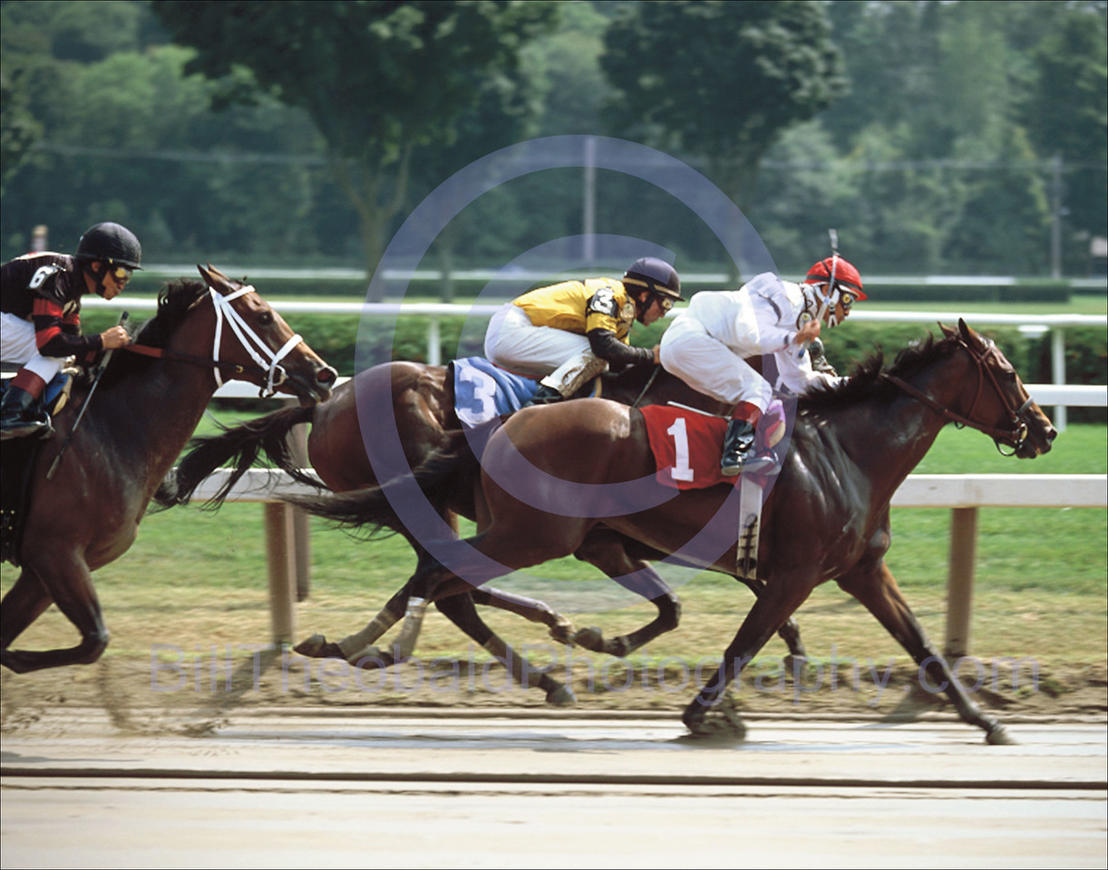 The field heads in to the long home stretch of historic Saratoga Race Course.