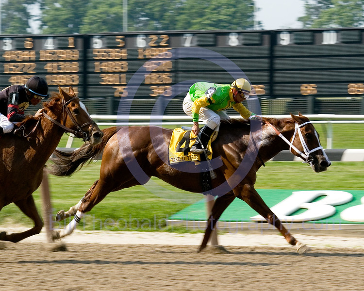 After dueling with Teammate through fast fractions Take D'Tour guided by Eibar Coa manages to hold off the oncoming Ginger Punch ridden by David Flores in the late stages of the Ogden Phipps at Belmont Park.