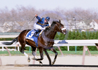 Bellamy Road & Javier Castellano on their way to winning the 2005 Wood Memorial at Aqueduct Race Course.