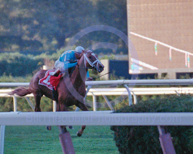 English Channel winning the 2006 Joe Hirsch Turf Classic at Belmont Park.