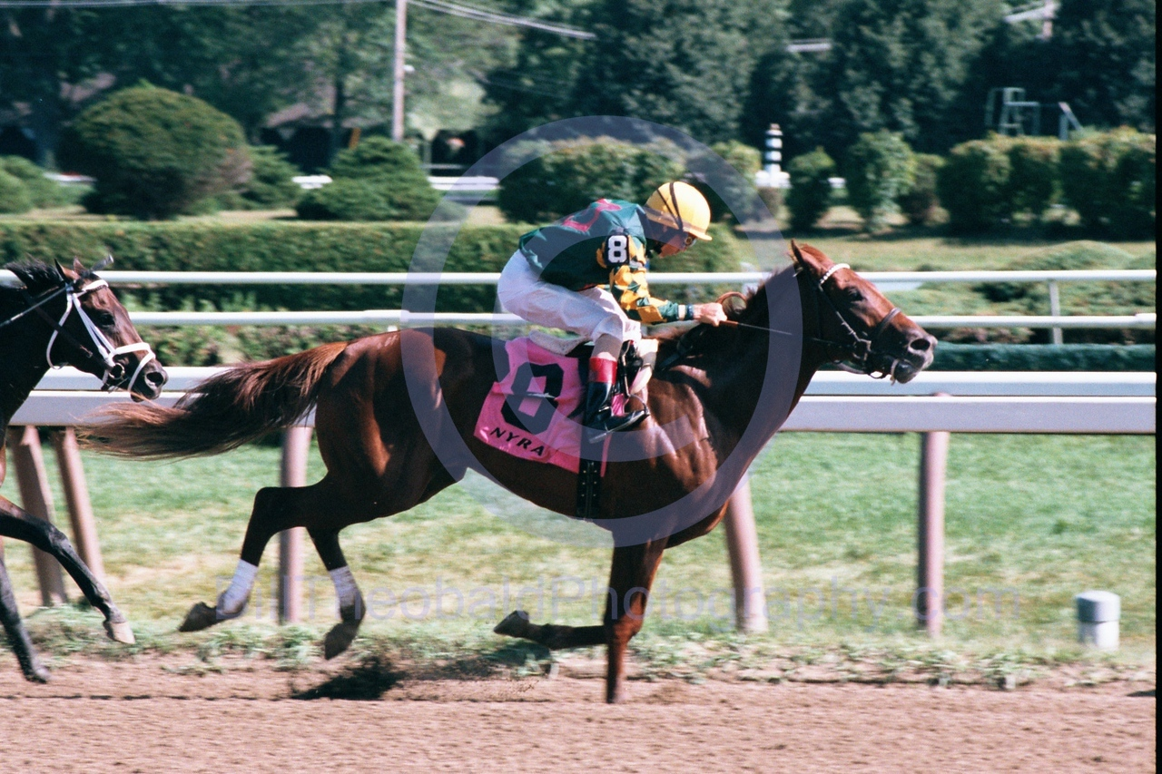 Saratoga Horse Racing.  Jerry Bailey seems to have yet another winner at Saratoga.