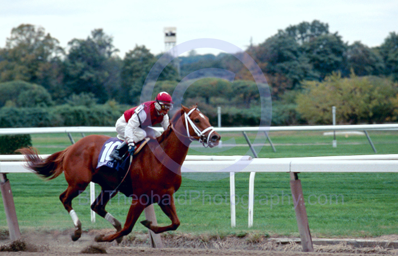 Henny Hughes leading into deep stretch in the 2005 Breeder's Cup Juvenile Race at Belmont Park