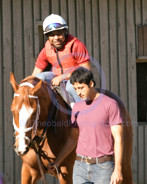 """Hall of Fame jockey Angel Cordero Jr. is on board of Belmont Stakes winner Rags to Riches early in the morning as they preapre for a work out at Saratoga.  """"Rags"""" was the first filly in 102 years to win the Test of Champions."""