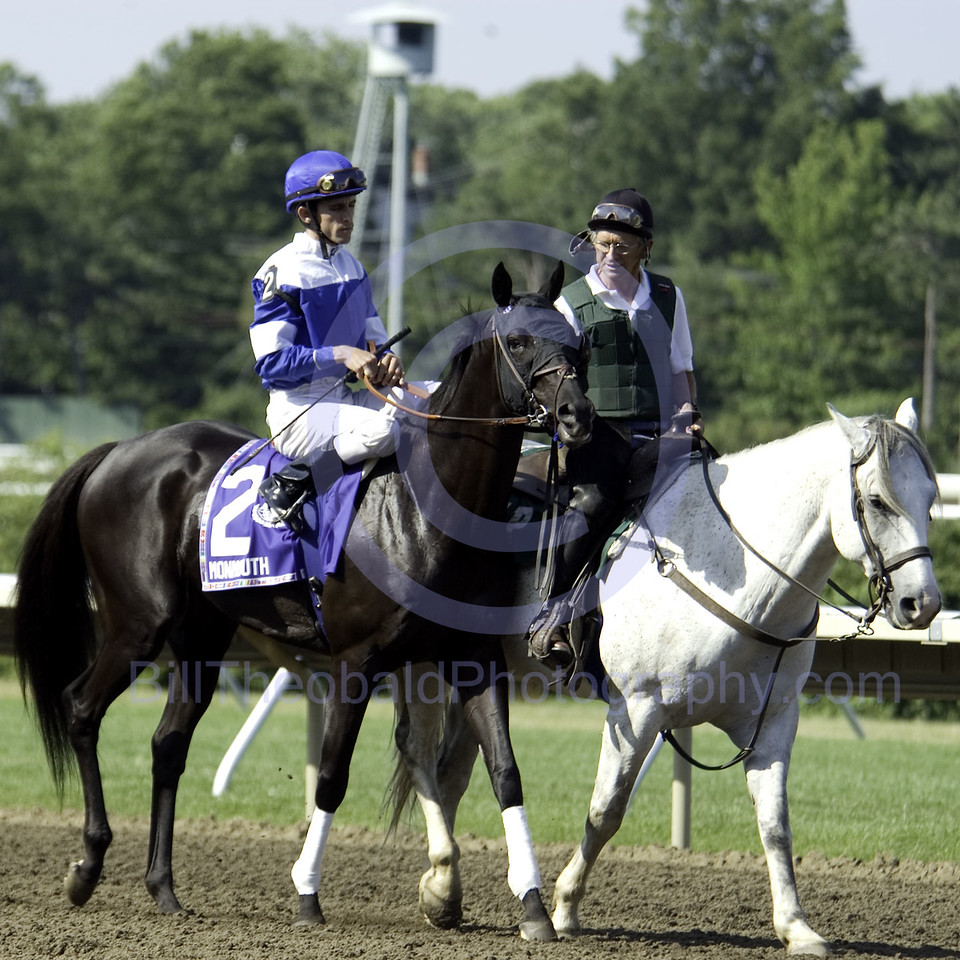 Better Talk Now in the Post Parade for the 2007 Running of the United Nations Stakes at monmouth Park.  Better Talk Now would finish 3rd in this race as an 8 year old.