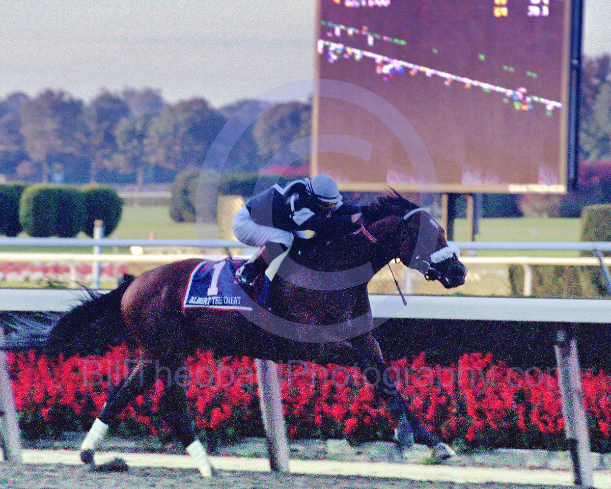 Albert The Great winning the Jockey Club Gold Cup in October of 2000.