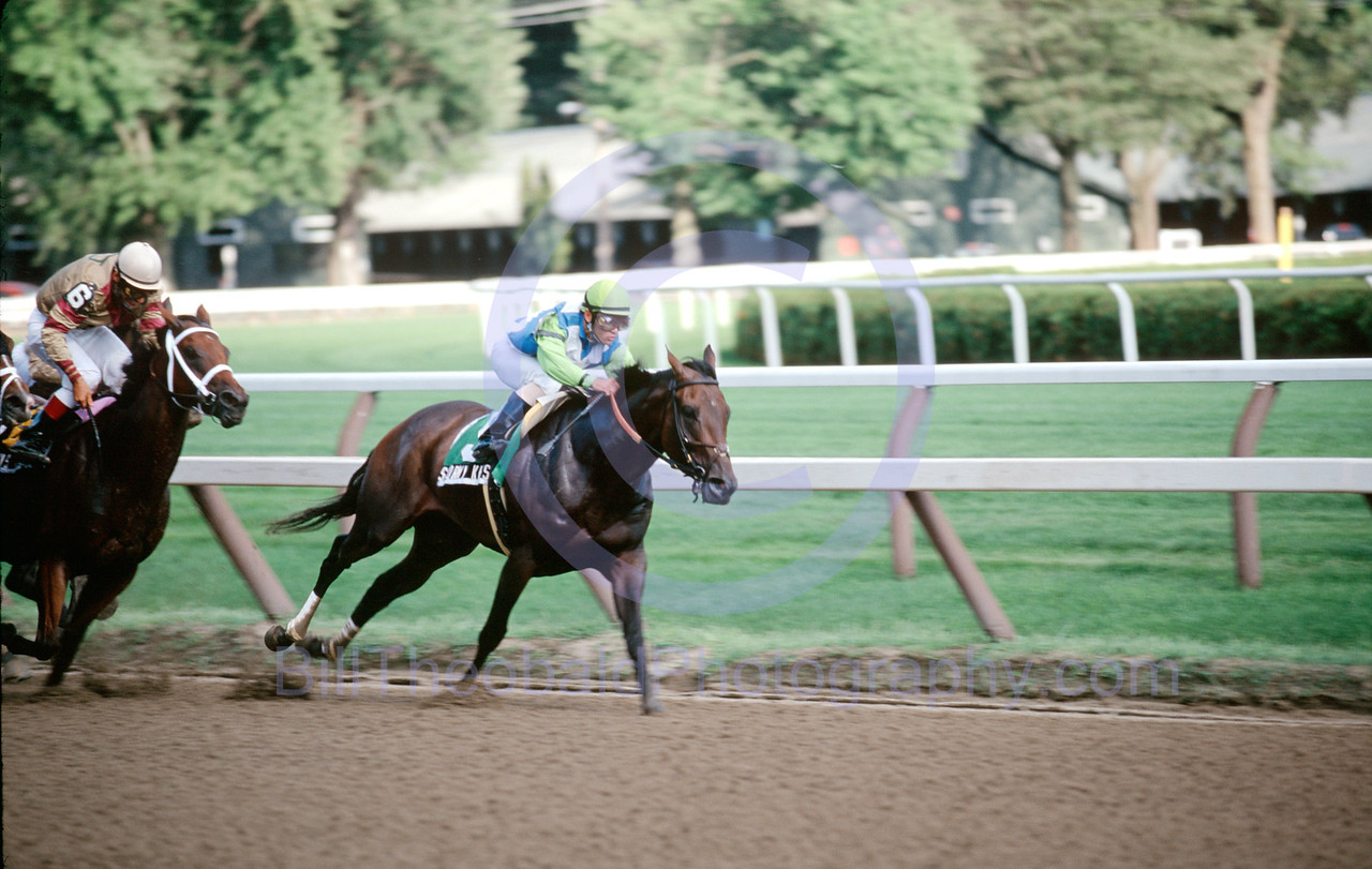 Stormy Kiss leads the field of The Honorable Miss Stakes into the home stretch at Saratoga Race Course.