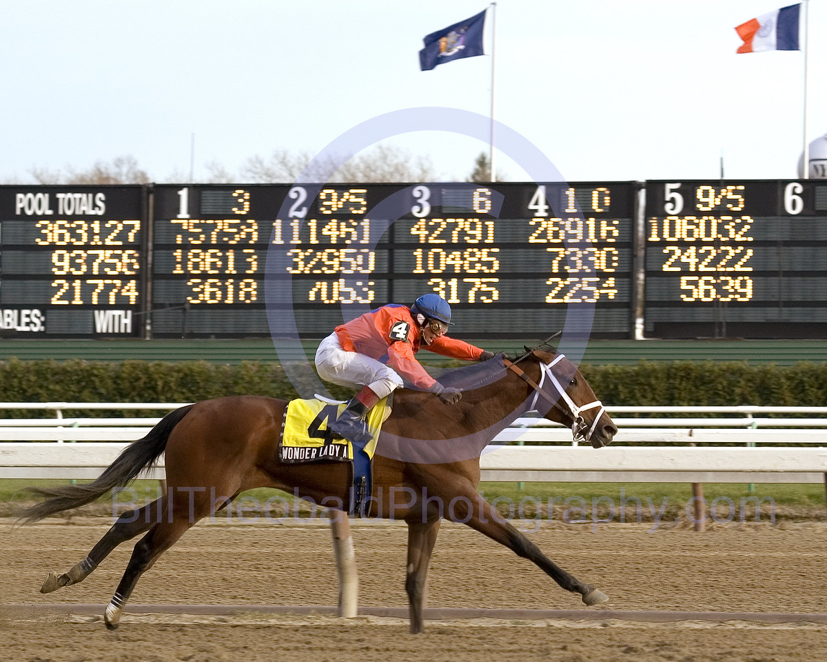 Wonder Lady Anne L shown winning the 2005 Demoiselle at Aqueduct in Ozone Park.  As you can see by the Tote board in the background she was the longest shot on the board.