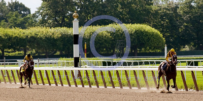Rachel Alexandra in one of her outstanding performances when she won the Mother Goose Stakes and in the process set a Stakes record.  The previous record had been established by the legendary Ruffian.