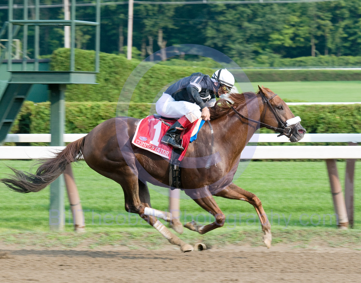 Commentator winning the 2008 renewal of the 2008 Whitney at Saratoga Race Course.  This is Commentator's 2 win in the presitigous race
