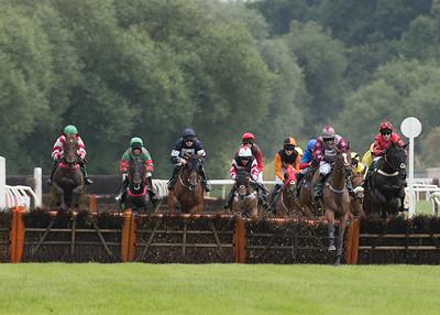 Race 2 - Field - DSC_1504