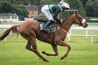 Race 1 - Ethelwyn - DSC_1474