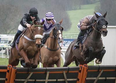 Race 1 - Amberjam & Harrison Beswick - NKP_5545
