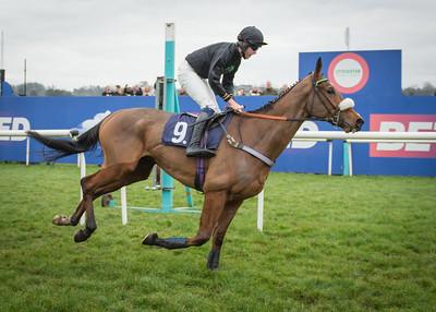 Race 1 - Amberjam & Harrison Beswick - DSC_8697