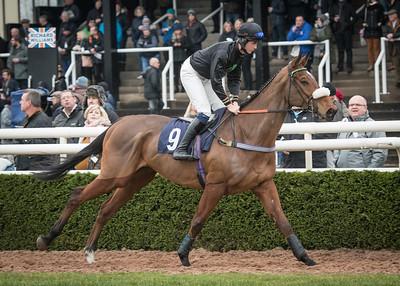 Race 1 - Amberjam & Harrison Beswick - NKP_5527