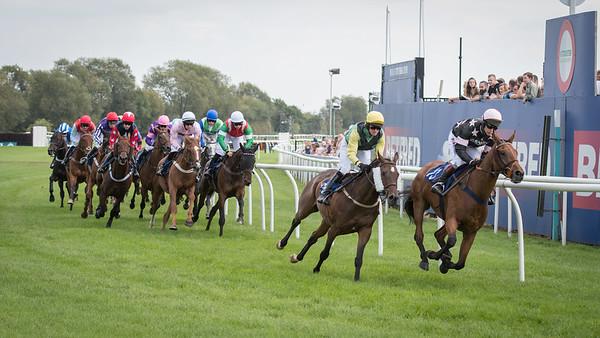 Race 2 - Court King - NKP_8695