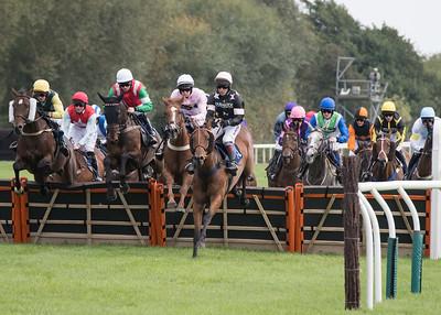 Race 2 - Court King - NKP_8674