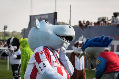 Mascot Race - NKP_8764