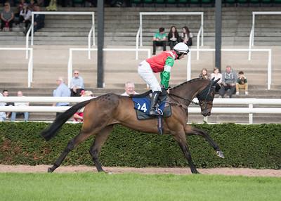 Race 2 - Court King - NKP_8612