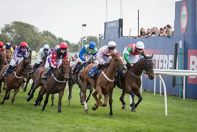 Race 2 - Court King - NKP_8698