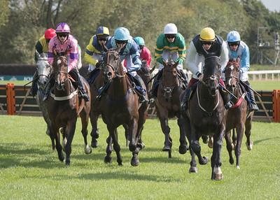 Race 1 - Templehills - NKP_8588