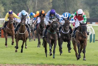 Race 2 - Court King - NKP_8710