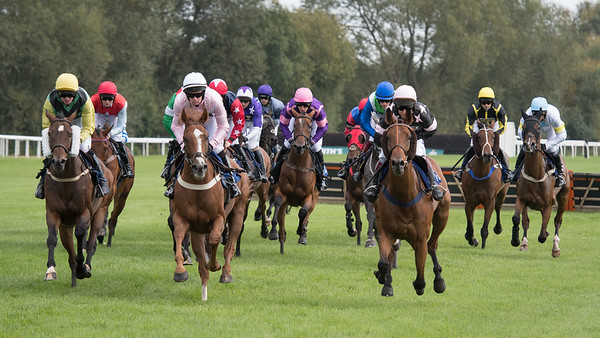 Race 2 - Court King - NKP_8682