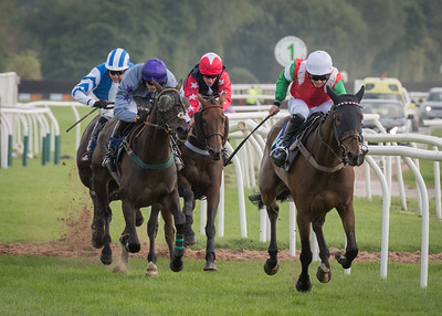 Race 2 - Court King - NKP_8714