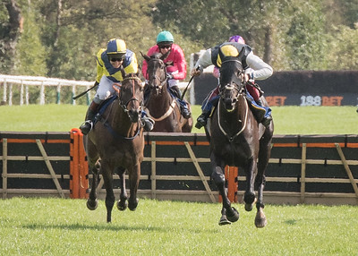 Race 1 - Templehills - NKP_8592