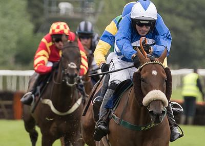 Race 3 - Bold Henmie - DSC_2501