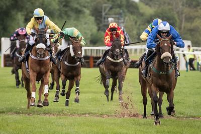 Race 3 - Bold Henmie - DSC_2503