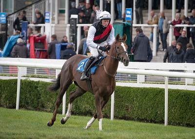 Race 2 - Apasionado - NKP_1334