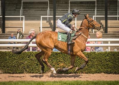 Race 1 - Stafford Jo- DSC_1741