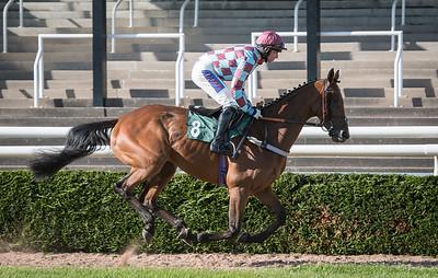 Race 2 - Henry Oliver - DSC_8653