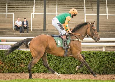 Race 1 - Le Capricieux - DSC_1189