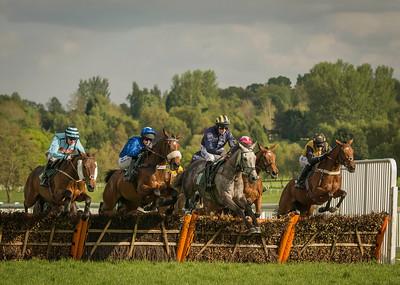 Race 2 - Field - DSC_9469