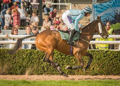 Race 2 - Coco Des Champs - DSC_9450