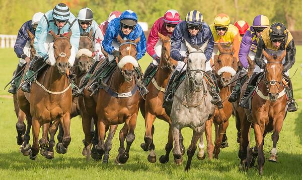 Race 2 - Field - DSC_9479