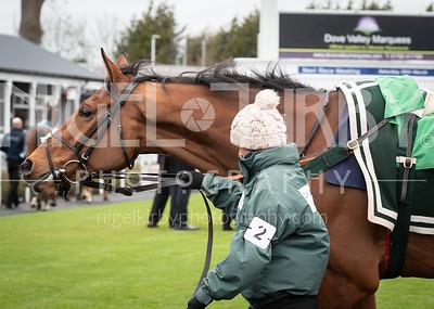 Race 2 - Capatain Cattistock - DSC_6761