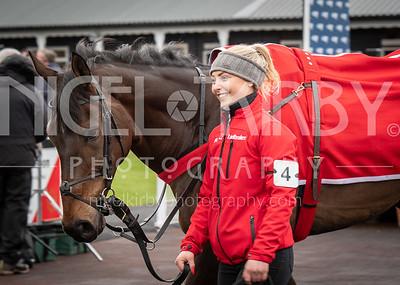 Race 2 - Aintree My Dream - DSC_6767