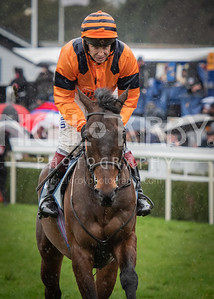 Race 4 - Back To The Thatch and Richard Johnson - DSC_7040