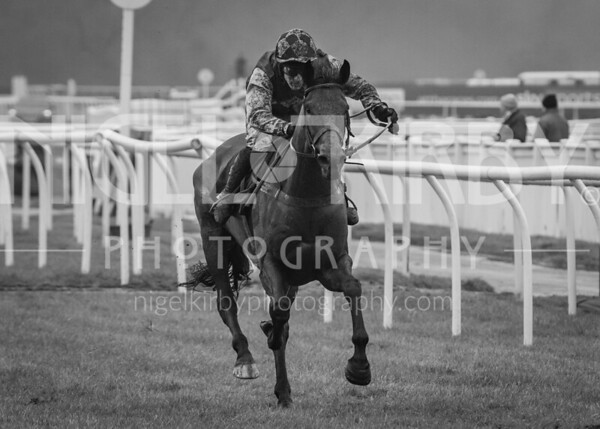 Uttoxeter Races - Sun 24 Nov 19
