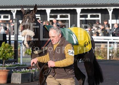 Race 1 - Kilcaragh Boy - NKP_6372