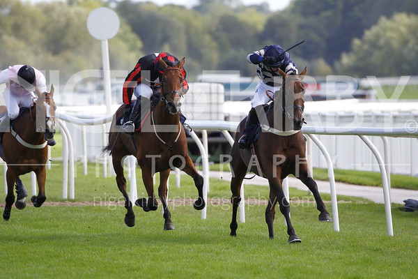 Uttoxeter Races - Wed 09 Sept 2020 (Photographer : Steve Davies)