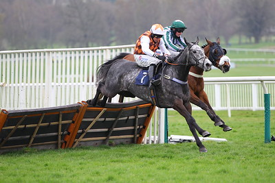 Stormy Flight wins at Uttoxeter. 1/4/2021 Pic Steve Davies