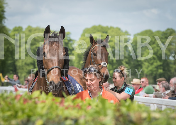 Worcester Races - Thu 10 May 2018