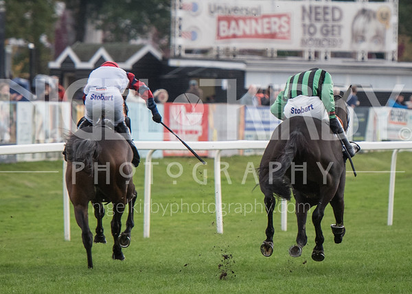 Worcester Races - Thu 11 Oct 2018