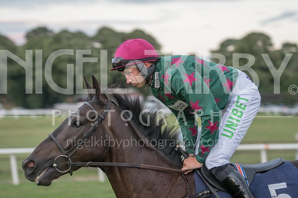 Worcester Races - Wed 15 Aug 2018