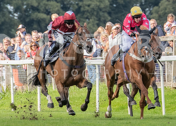 Worcester Races - Sun 01 Sept 2019