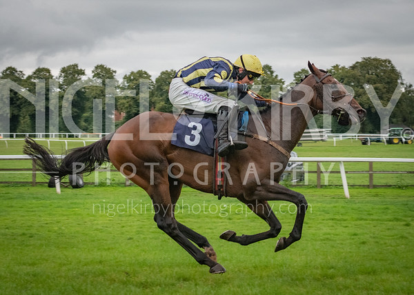 Worcester Races - Wed 28 Aug 2019