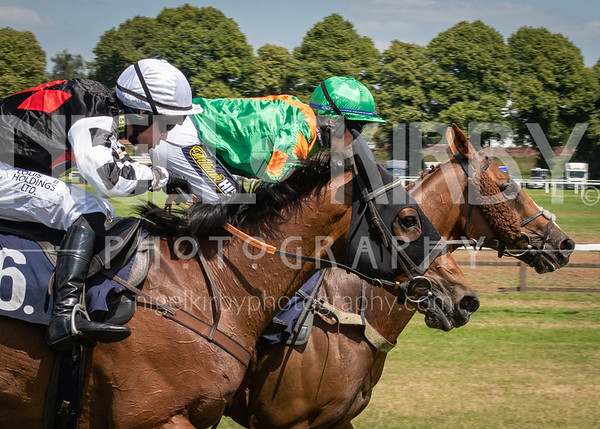 Worcester Races - Wed 3 July 2019